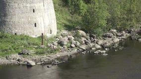 Gränsstolpe som är från den ryska federationen på flodbanken på fästningen Ivangorod stock video