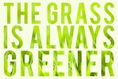 Gräs är alltid mer grön Arkivfoton