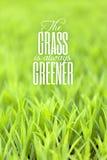 Gräs är alltid mer grön citationstecken Arkivbilder