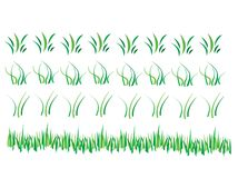 gräs Arkivfoto