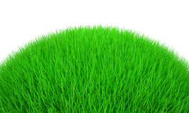 gräs 3d Royaltyfri Fotografi