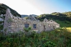 Gräs att växa från 1 barack för världskrig royaltyfria bilder