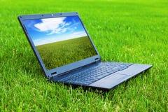 gräs bärbar dator Arkivbild