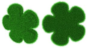 Gräs- blomma format objekt Arkivfoto