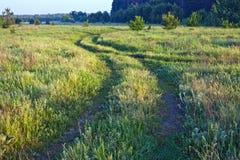 gräs för abstrakt begrepp 3d framför vägen Royaltyfri Bild