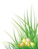 gräs för bakgrundseaster ägg Royaltyfri Foto