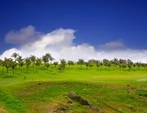 Gräs för Gran Canaria Meloneras golfgreen Arkivfoto