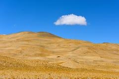 Gräs för Kina Tibet snömoln Arkivfoto