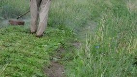 Gräs för manbeskäraresnitt stock video