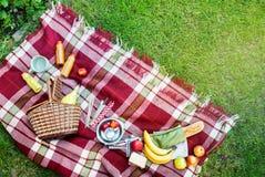 Gräs för picknick för pläd för frukt för korginställningsmat rutigt fotografering för bildbyråer