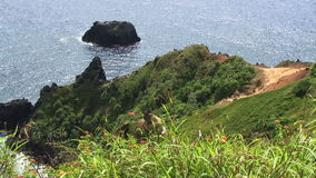 Gräs för Pitcairn ö i förgrund som ner ser för att bevattna arkivfilmer