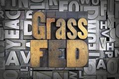 Gräs Fed royaltyfria bilder