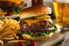 Gräs Fed Bison Hamburger arkivbilder