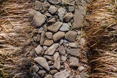 Gräs fodrade Rocky Trail, övre detalj för Appalachian slingaslut royaltyfri fotografi