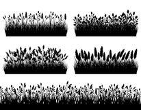 Gräs gränsar konturuppsättningen på den vita bakgrundsvektorn Arkivbild