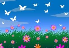 Gräs-, himmel- och ängblommor Arkivfoton