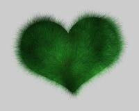 gräs hjärta Royaltyfri Fotografi