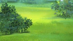 Gräs i ängen Royaltyfri Fotografi