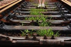 gräs järnvägen Royaltyfri Foto