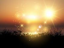 Gräs- landskap för solnedgång Arkivfoton