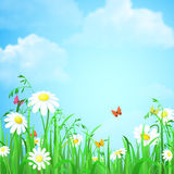 Gräs med bakgrund för blomma- och fjärilsvektorlägenheten stock illustrationer