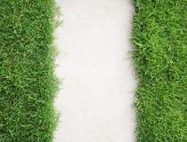 Gräs med gångbanabakgrund Arkivfoto