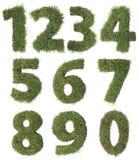 Gräs numrerar utklipp Arkivfoton