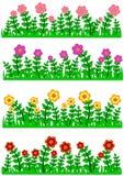 Gräs- och blommagränssamling Arkivfoto