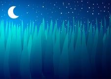 Gräs och måne på natten Royaltyfria Foton