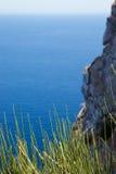 Gräs på en bakgrund av det blåa havet, himmel och vaggar Royaltyfri Foto