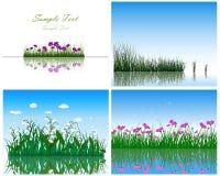 Gräs 4 på vattenbakgrunder royaltyfri illustrationer