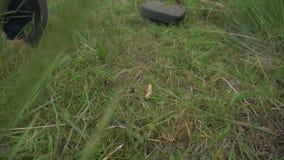 Gräs roterande snitt för elektriskt beskärareblad och filialer på platsen lager videofilmer