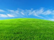 gräs- rund kulle Arkivfoton