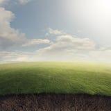 Gräs- sätta in tunnelbanan arkivbilder