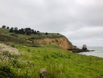 Gräs- skuggat kust- fotvandra fyllt med vildblommor, växter och träd som förbiser den Rockaway stranden, Pacifica, Kalifornien fotografering för bildbyråer