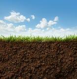 gräs smutsar Royaltyfri Fotografi