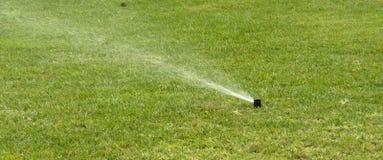 gräs sprinkleren Arkivfoto