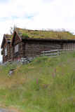Gräs taklagd koja Arkivfoton