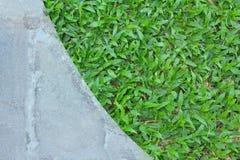 Gräs texturerar royaltyfria foton