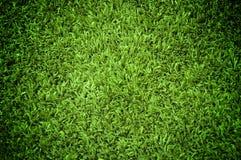 Gräs texturerar Royaltyfri Bild