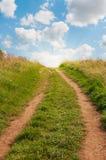 Gräs- vända mot för bana som är stigande med blå himmel Arkivbilder