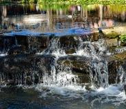 Gräsand Duck Floating On en vattenfall arkivbilder