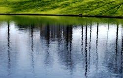 gräsdammreflexioner Arkivbild