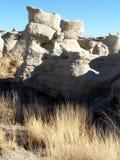 Gräser und Felsen Stockbilder