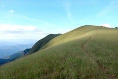 Gräsfält på det höga berget Arkivbild