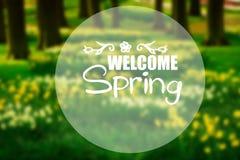 Gräsgräsmatta med påskliljor i vårträdgård stock illustrationer
