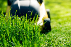 Gräsklippare på gräset Arkivbild
