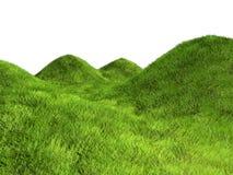 gräskullar Arkivbilder