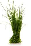 gräslökar Arkivfoton