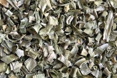 Gräslökar - erbacipollina Arkivfoton